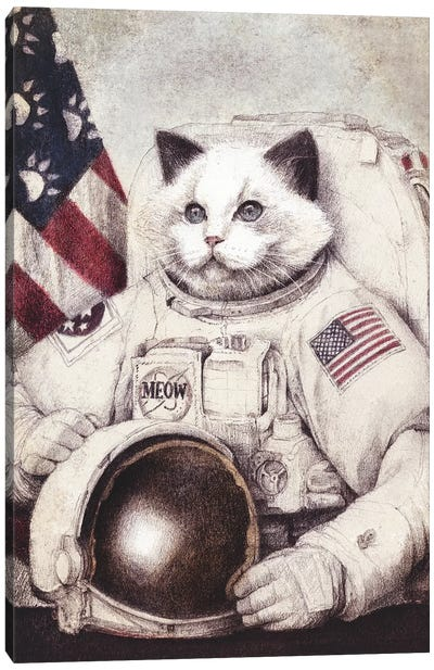 Meow Out Of Space Canvas Art Print