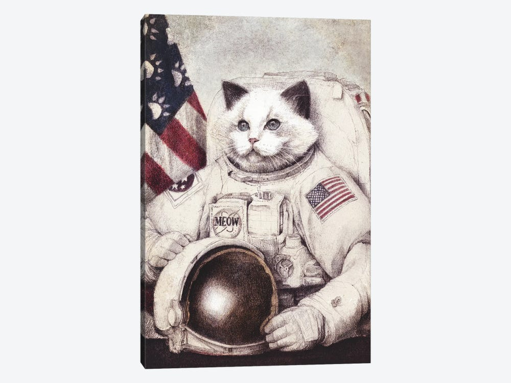 Meow Out Of Space by Mike Koubou 1-piece Canvas Print