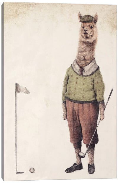 Alpaca Golf Club Canvas Art Print