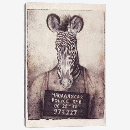 Madagascar Mugshot Canvas Print #MKB92} by Mike Koubou Canvas Artwork