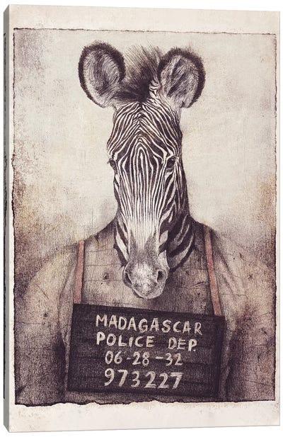 Madagascar Mugshot Canvas Art Print