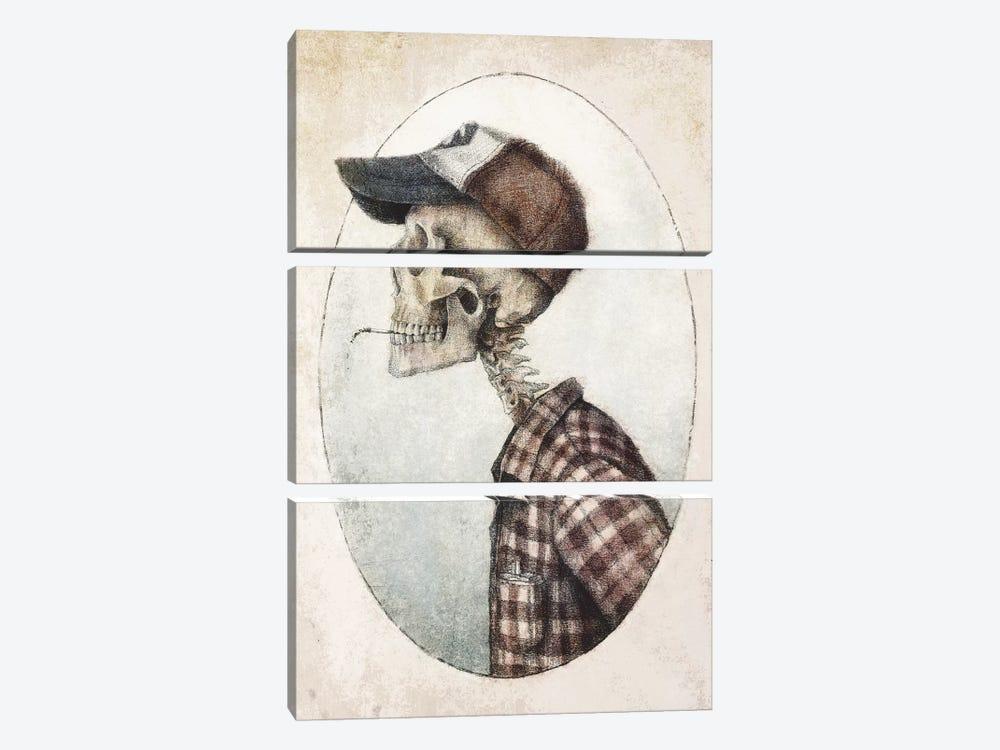Jack by Mike Koubou 3-piece Canvas Artwork