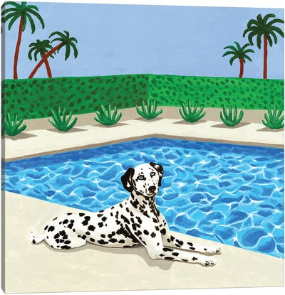Chilling Dalmatian Canvas Art Print