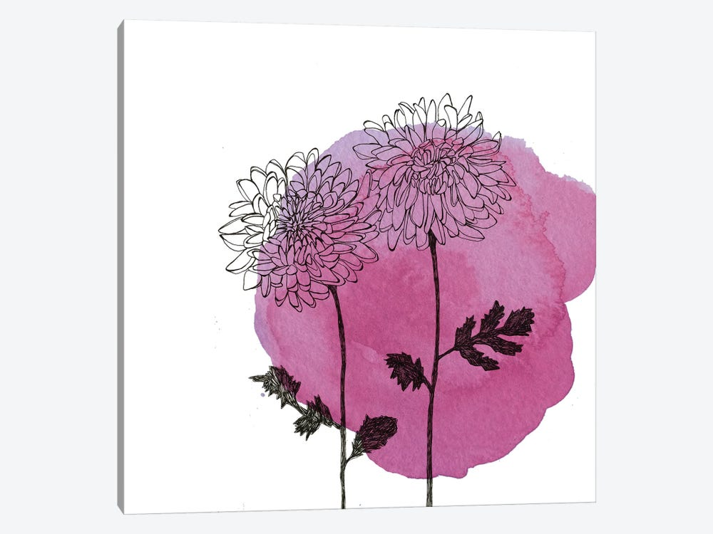 Chrysanthemums by Morgan Kendall 1-piece Canvas Art Print
