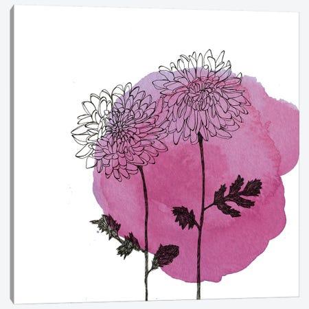 Chrysanthemums Canvas Print #MKE102} by Morgan Kendall Canvas Art Print