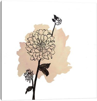 Dahlias Canvas Print #MKE103