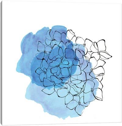 Hydrangea Canvas Print #MKE106