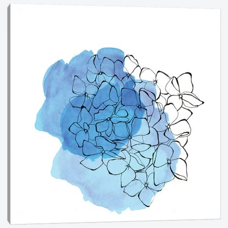 Hydrangea Canvas Print #MKE106} by Morgan Kendall Canvas Wall Art