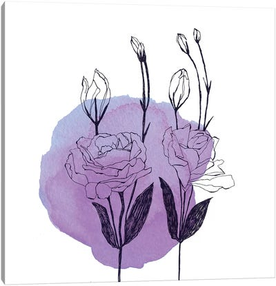 Lisianthus by Morgan Kendall Canvas Art Print