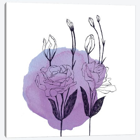 Lisianthus Canvas Print #MKE107} by Morgan Kendall Canvas Wall Art