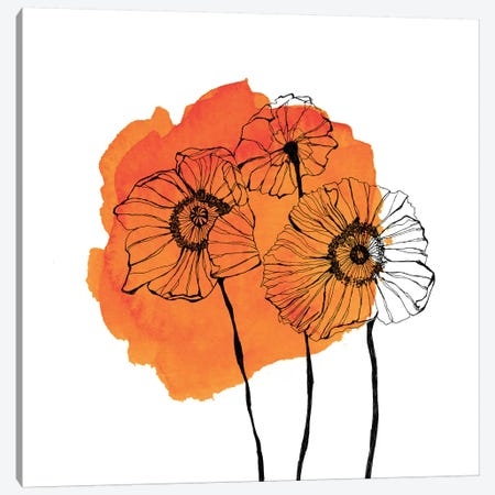 Poppies Canvas Print #MKE110} by Morgan Kendall Canvas Wall Art