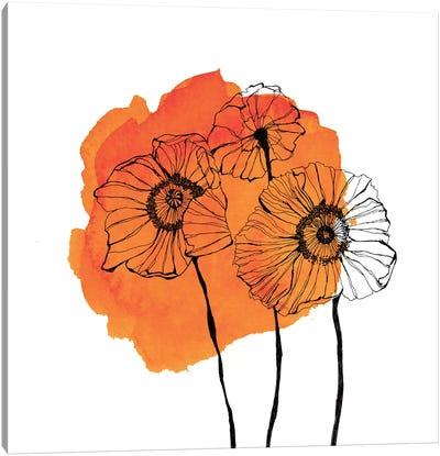Poppies by Morgan Kendall Canvas Art Print