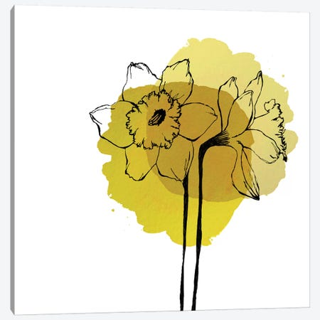 Yellow Daffodils Canvas Print #MKE113} by Morgan Kendall Canvas Art