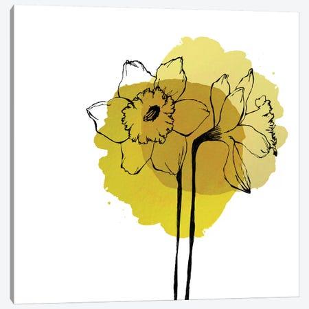 Yellow Daffodils Canvas Print #MKE113} by Morgan Kendall Canvas Art