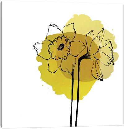 Yellow Daffodils Canvas Art Print
