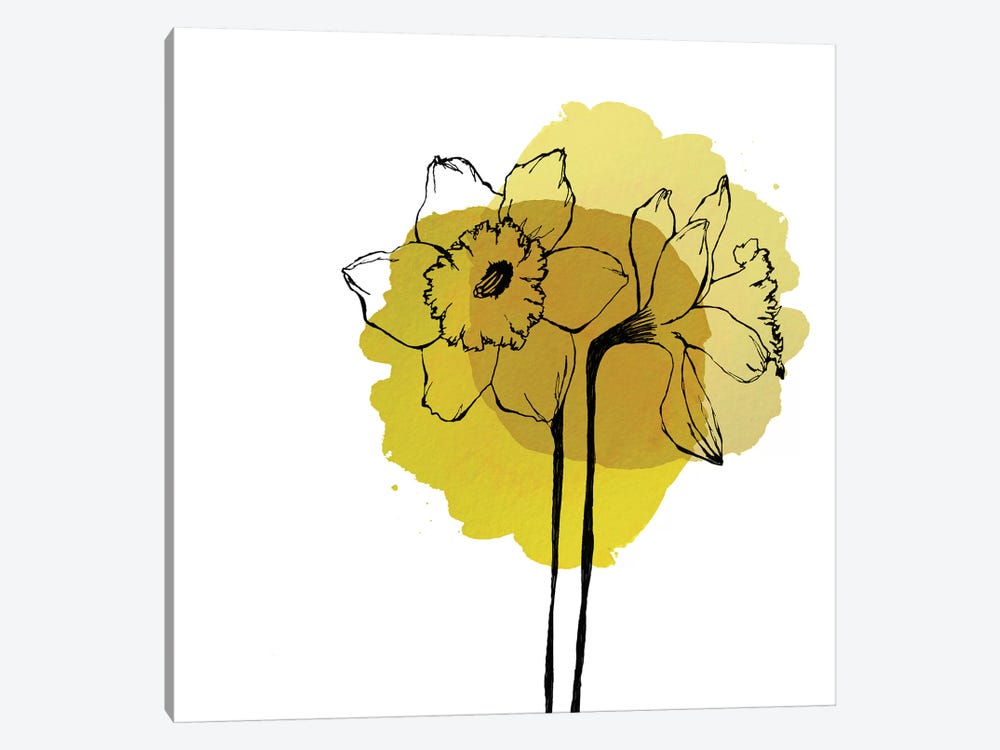 Yellow Daffodils by Morgan Kendall 1-piece Canvas Print