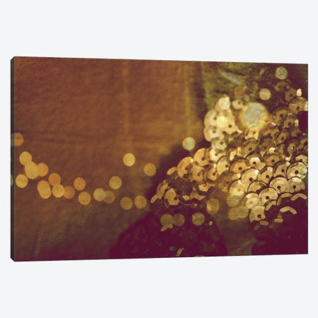 Faded Memories Canvas Print #MKE14} by Morgan Kendall Canvas Artwork