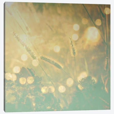 Endless Summer Canvas Print #MKE17} by Morgan Kendall Canvas Art