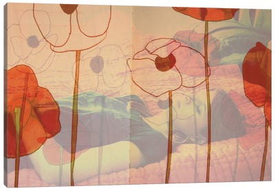Poppies Will Make Them Sleep Canvas Art Print