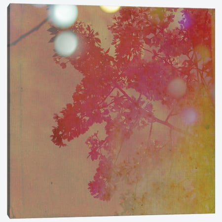 Neon Sky Canvas Print #MKE34} by Morgan Kendall Canvas Artwork