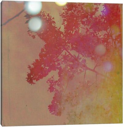 Neon Sky Canvas Art Print