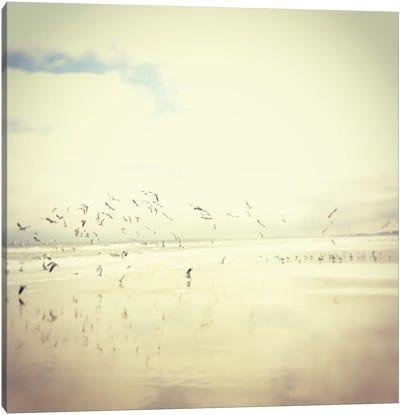 Silver Sky Canvas Print #MKE4