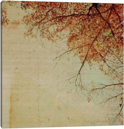 Through The Tree Tops Canvas Art Print