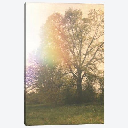 Parchment Sky Canvas Print #MKE62} by Morgan Kendall Canvas Artwork