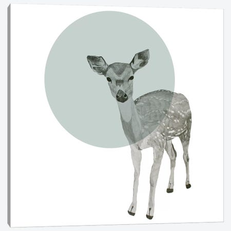 Deer Canvas Print #MKE65} by Morgan Kendall Canvas Print