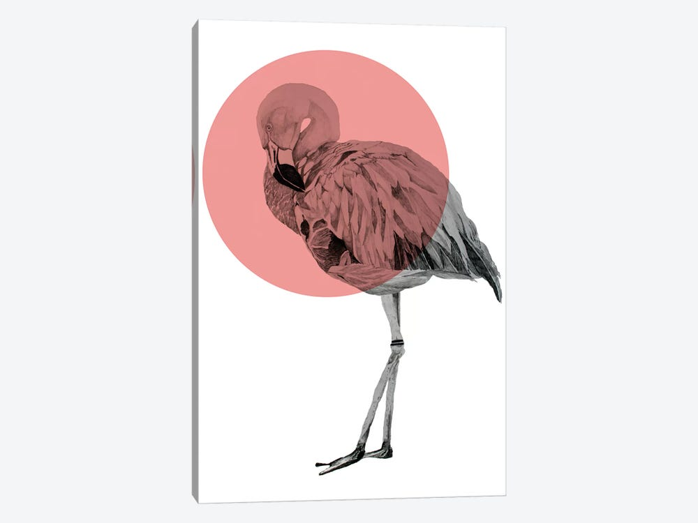 Flamingo by Morgan Kendall 1-piece Canvas Art Print