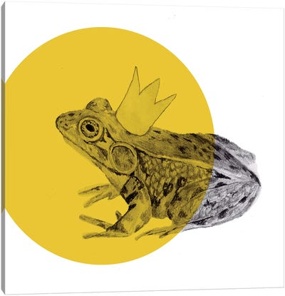 Frog Prince Canvas Art Print