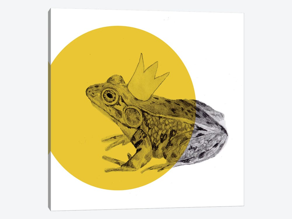 Frog Prince by Morgan Kendall 1-piece Canvas Artwork