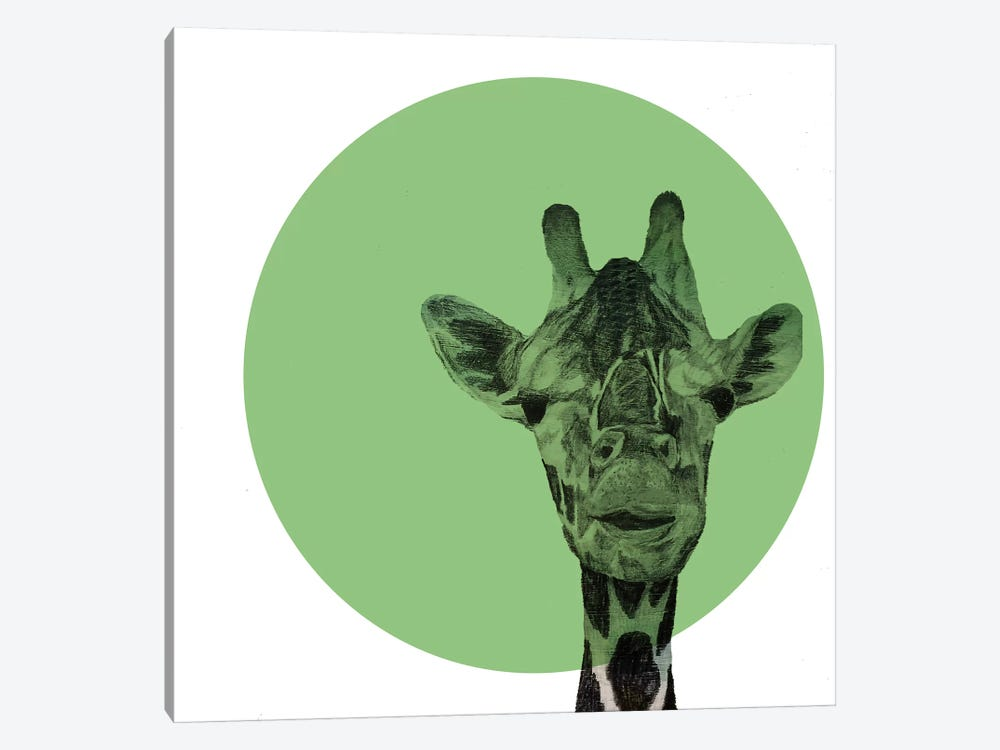 Giraffe by Morgan Kendall 1-piece Canvas Print