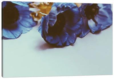 Violet Dreams Canvas Art Print