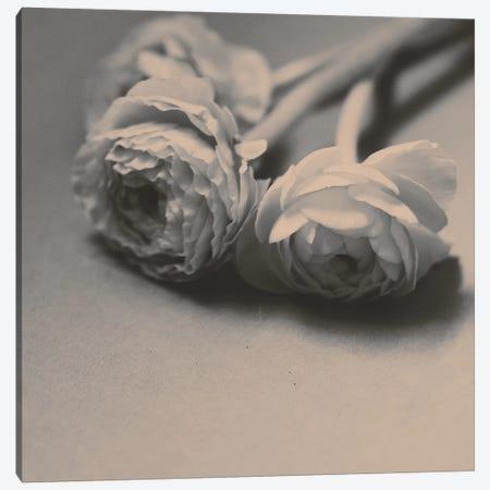 Layered Canvas Print #MKE90} by Morgan Kendall Art Print