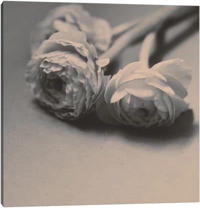 Layered Canvas Art Print
