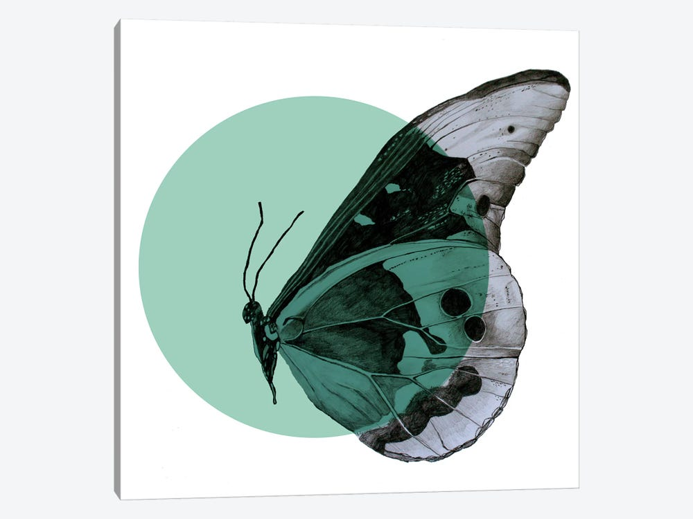 Moth 1-piece Canvas Art