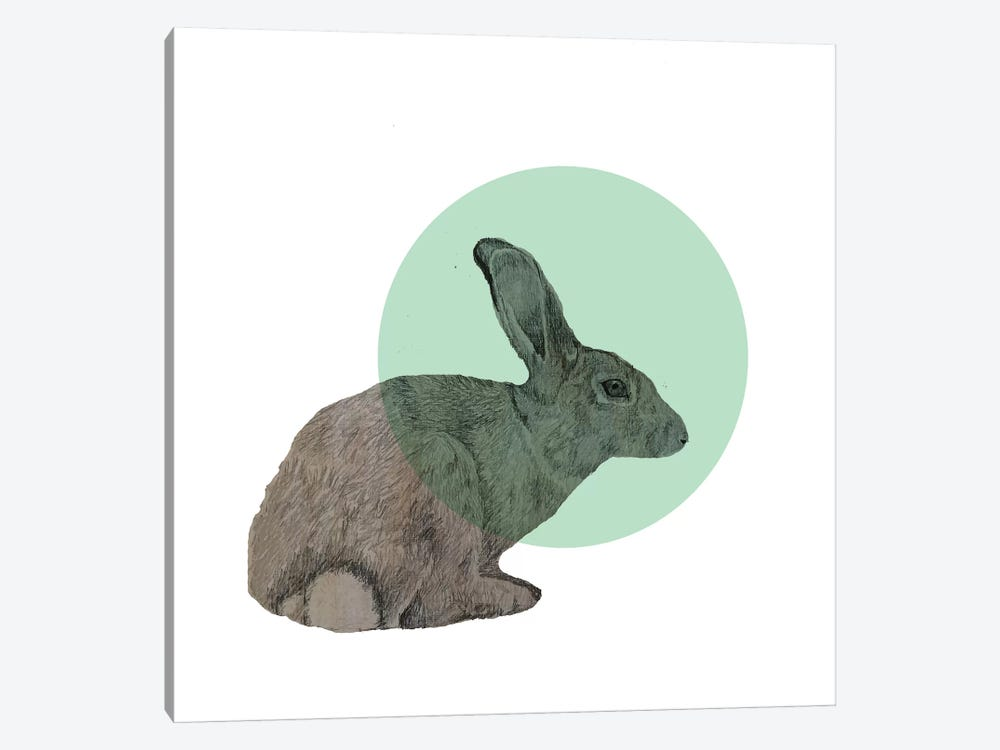 Rabbit 1-piece Canvas Print