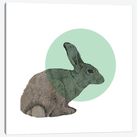 Rabbit 3-Piece Canvas #MKE94} by Morgan Kendall Canvas Art