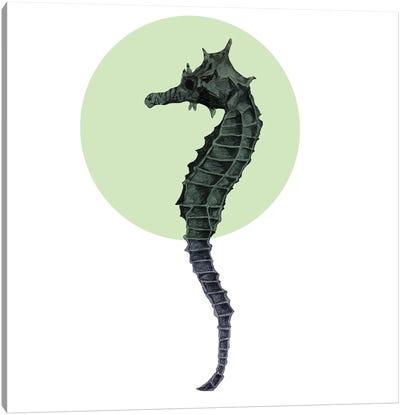 Seahorse Canvas Art Print