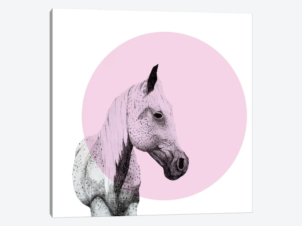 Speckled Horse by Morgan Kendall 1-piece Canvas Art Print