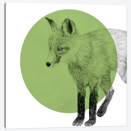 Fox Canvas Print #MKE99} by Morgan Kendall Art Print