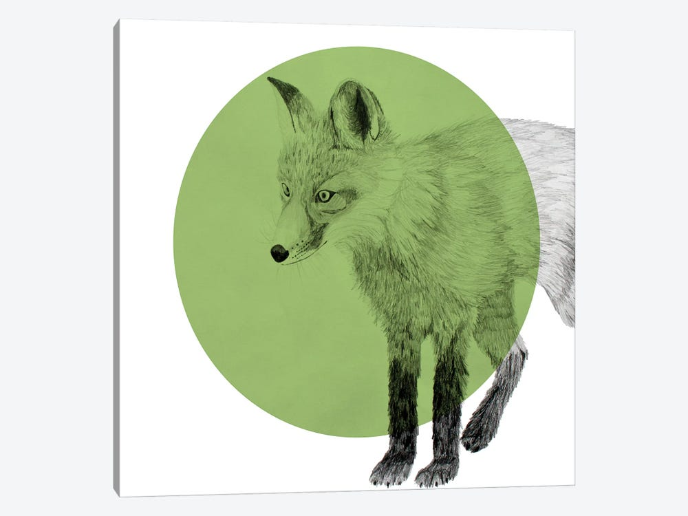 Fox by Morgan Kendall 1-piece Canvas Artwork