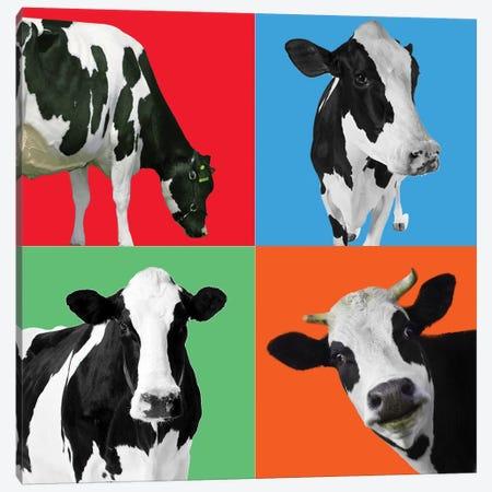 Cow III 3-Piece Canvas #MKH21} by Mark Ashkenazi Canvas Art Print