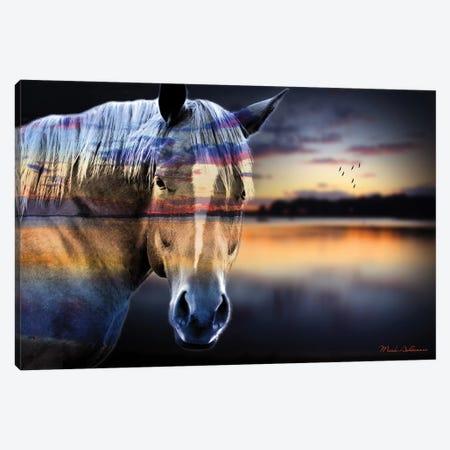 Horse Lake Canvas Print #MKH45} by Mark Ashkenazi Canvas Wall Art