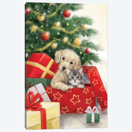 Christmas Dog and Cat in Box Canvas Print #MKK52} by MAKIKO Art Print