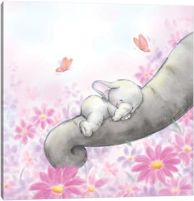 Baby Elepant Sleeping Canvas Art Print