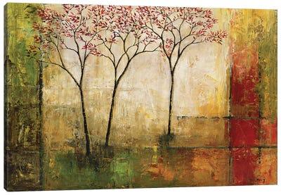 Morning Luster II Canvas Art Print