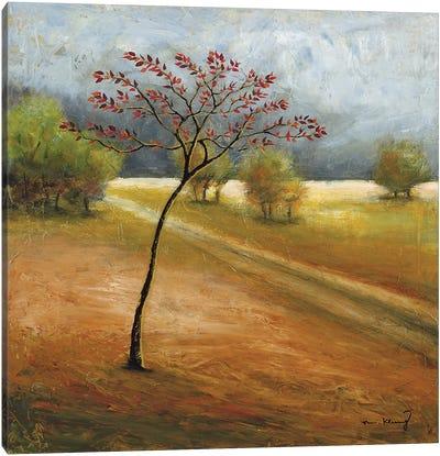 Observation I Canvas Art Print
