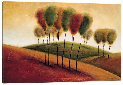 A New Morning I Canvas Art Print